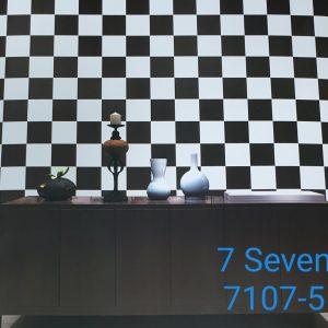 7107-5 (2)