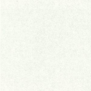 83065-1